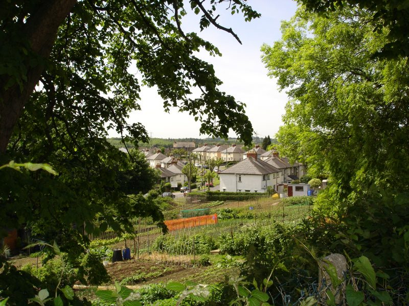 Pontyclun Allotments